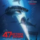 0069-DVD-47 Meters Down